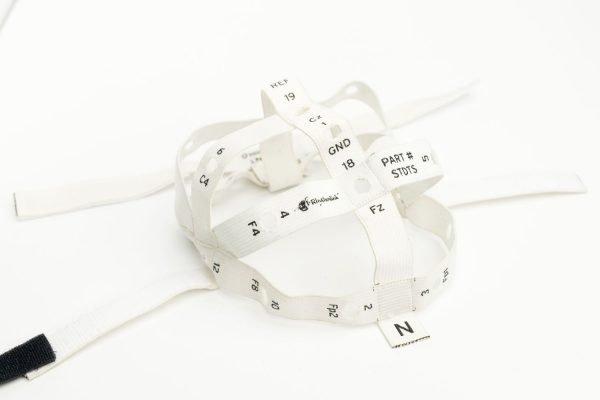 EEG template